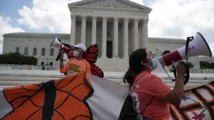 """Manifestantes celebran luego de que la Corte Suprema de Estados Unidos fallara contra un intento de la Administración Trump de poner fin a un programa que protege de la deportación a cientos de miles de inmigrantes, llamados """"Dreamers"""", en Washington, EE. UU., el 18 de junio de 2020."""