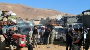 عناصر من الأمن اللبناني بالقرب من سيارات تقل لاجئين سوريين يستعدون لمغادرة لبنان في 23 تموز/يوليو 2018