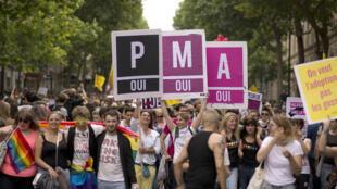 Des participants à la Gay pride favorables à la PMA à Paris en juin 2013.