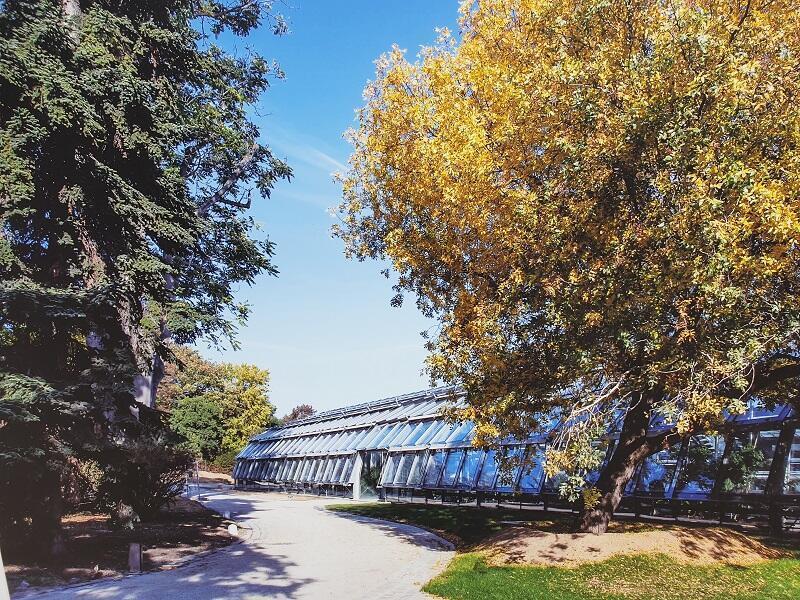 """حديقة """"سير دو تاي"""" قرب رولان غاروس"""