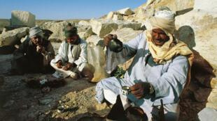 Des hommes font une pause pour boire le thé dans le désert, dans la région du Sinaï en Égypte.
