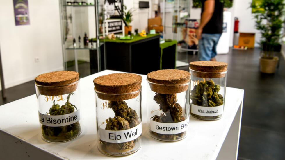 medical marijuana access services