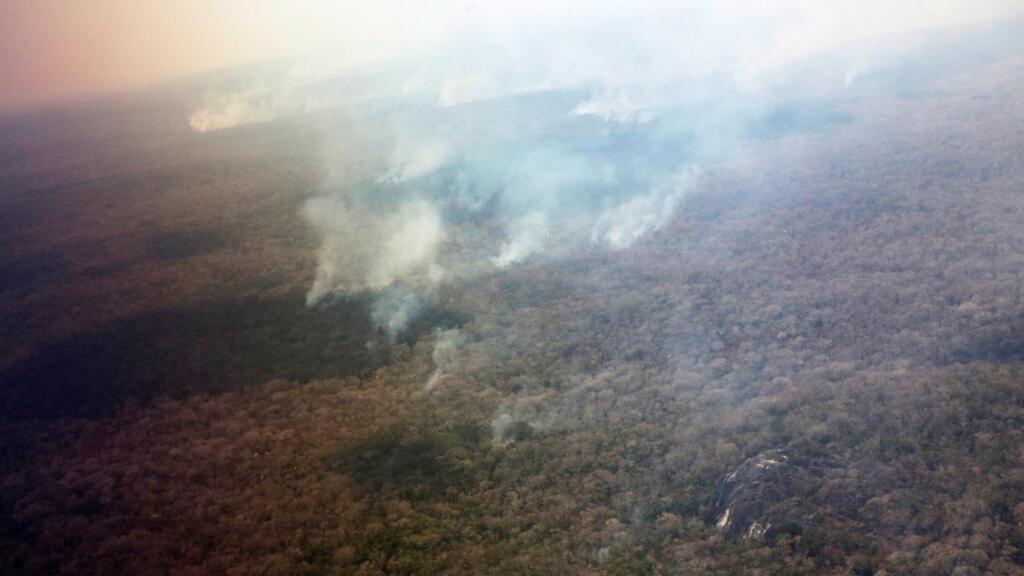 Resultado de imagen para la devastacion de la amazonía boliviana
