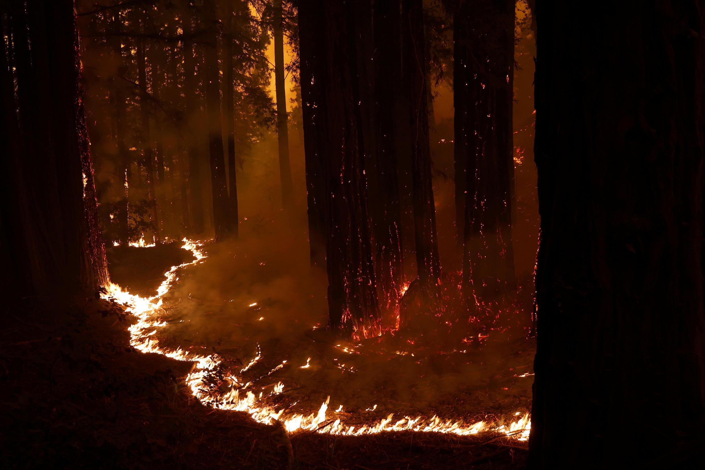 Las llamas destruyen la vegetación en las afueras de Santa Cruz, California, el 20 de agosto de 2020.