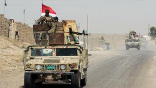 Les forces irakiennes avancent sur la route de Falloujah le 28 mai.