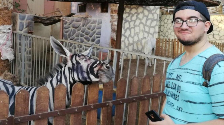 """Une photo du """"zèbre"""" du zoo de l'International Garden du Caire, posté le 21 juillet 2018 sur Facebook."""