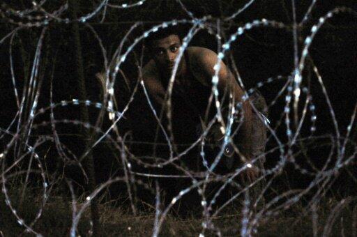 مهاجر يحاول عبور الشريط الشائك عند الحدود المجرية الصربية 30 آب/أغسطس 2015