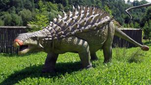 Représentation d'un ankylosauridé au JuraPark Baltow, en Pologne.