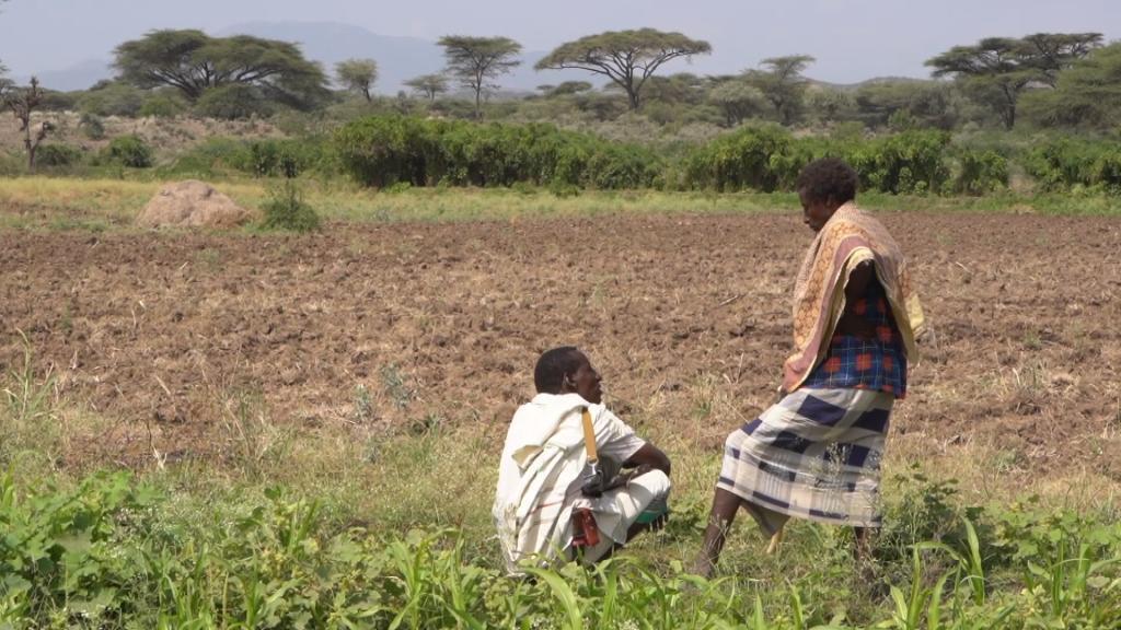 Focus Ethiopia