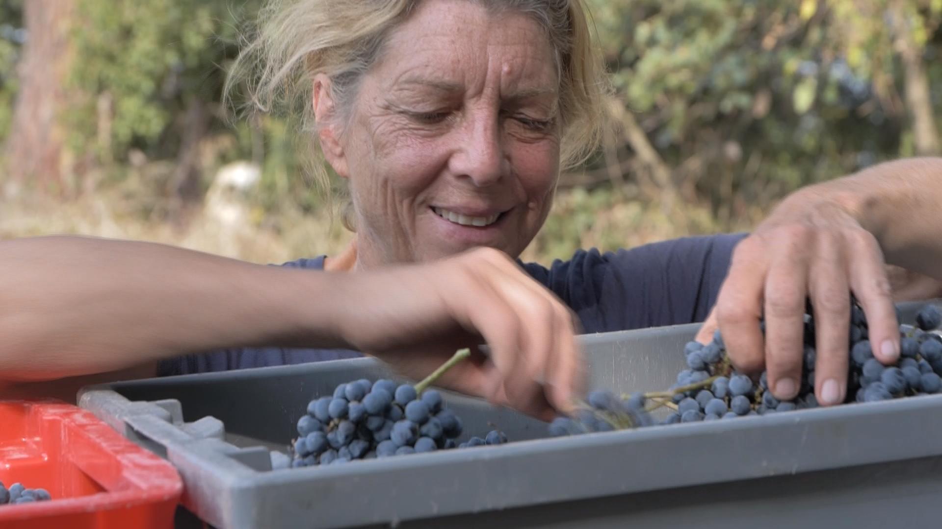 The 51 percent - women in wine