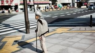 A rapidly ageing population is a major domestic problem in Japan