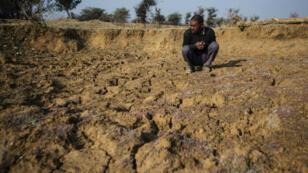 Un fermier indien accroupi au milieu de son champ asséché, dans la région de Madhya Pradesh, en 2016.