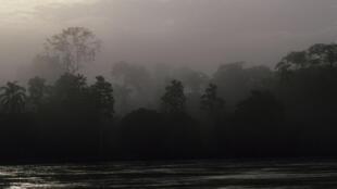 Bassin amazonien de l'Équateur. Image d'illustration.