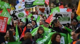 """Protesters wave flags and placards during a demonstration called by the movement 'La Manif pour tous' against the """"Medically-assisted procreation (MAP) without a father"""" in Paris on January 19, 2020."""