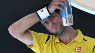 Le numéro un mondial à l'ATP Novak Djokovic.