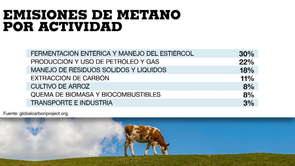 El 60% de las emisiones totales provienen de la actividad humana. De estas, el 56% del sector agroganadero y el 41% del uso de combustibles fósiles.