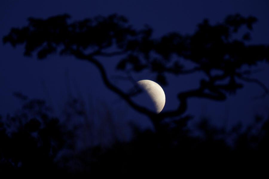 L'éclipse partielle de Lune vue depuis Brasilia, au Brésil, le 16 juillet 2019.