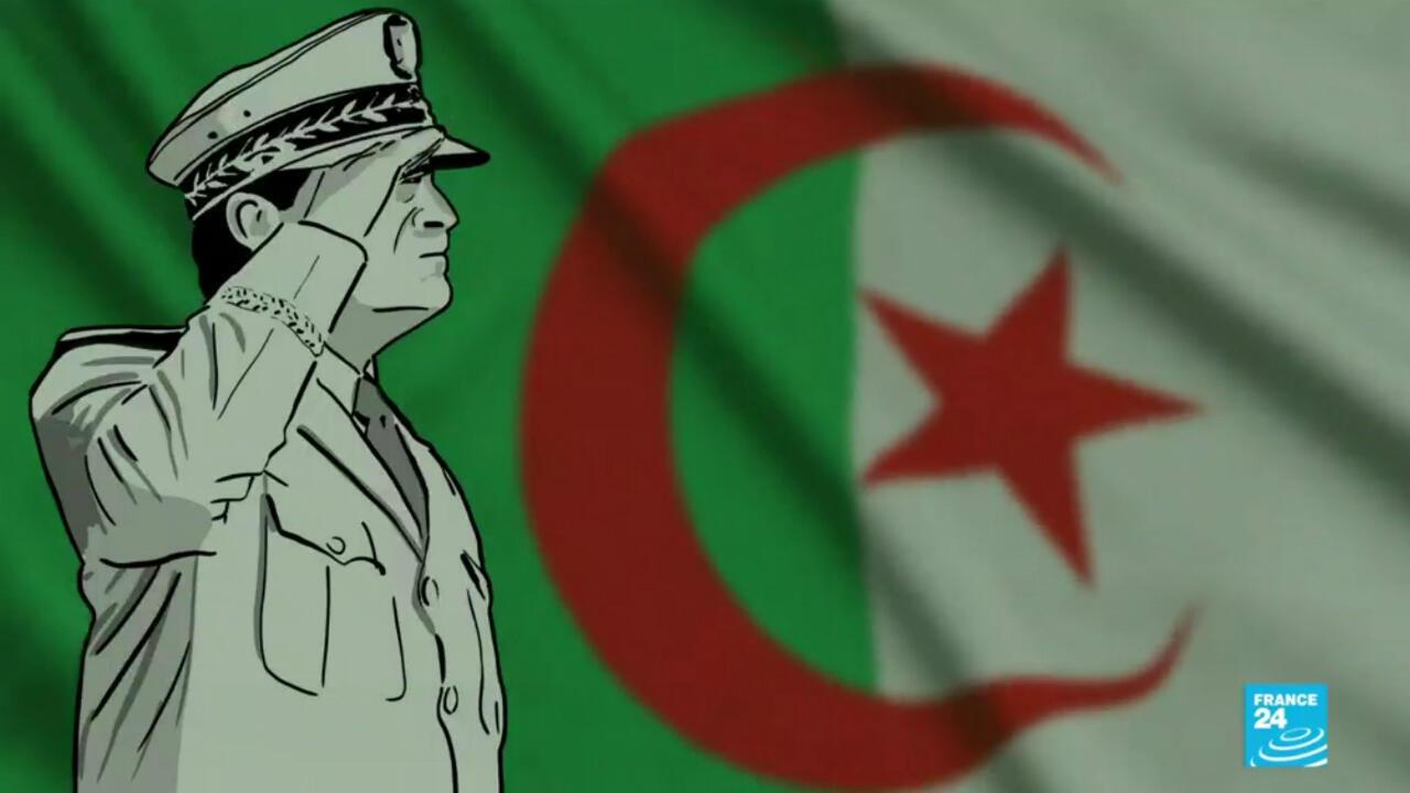 AlgerieInfoEnDessins