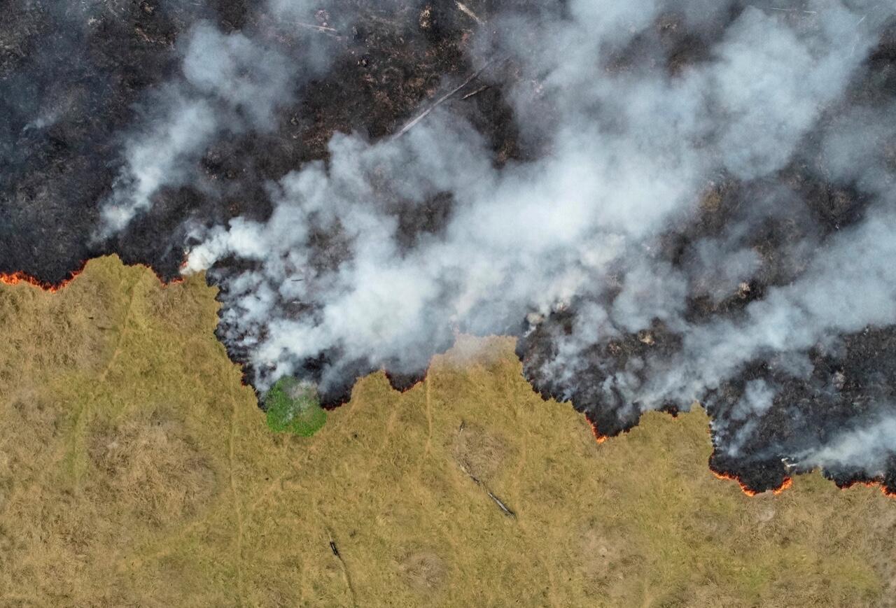 Vista de una parcela deforestada de la selva amazónica en Porto Velho, Brasil, el 24 de agosto de 2019.