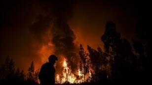 Un pompier près de l'incendie qui consume la forêt à Amendoa, près de Maçao, dans le centre du Portugal, le 21 juillet 2019.