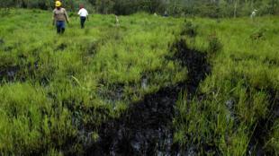 La contaminación afectó a las poblaciones asentadas sobre el río Coca, cuyo caudal se conecta con otros afluentes hasta llegar al Amazonas