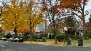 La partie cossue du quartier Jamaica Estates, à New York.