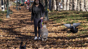 A woman wears a face mask as a preventive measure against the spread of COVID-19 as she walks her dog in Santiago, on June 14, 2020