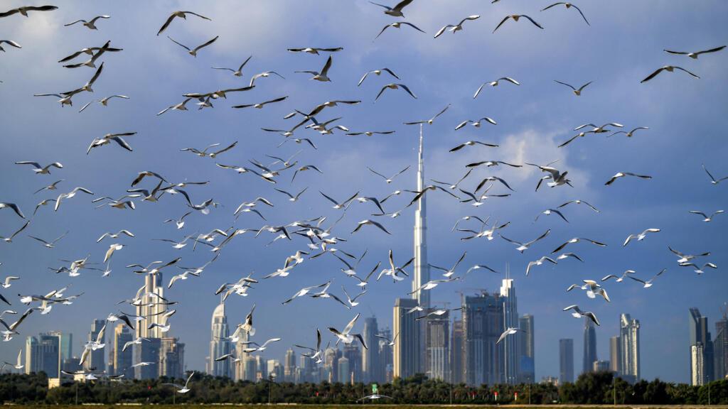 مطاعم في دبي تقدم خصومات للأشخاص الذين تلقوا تلقيحا ضد فيروس كورونا