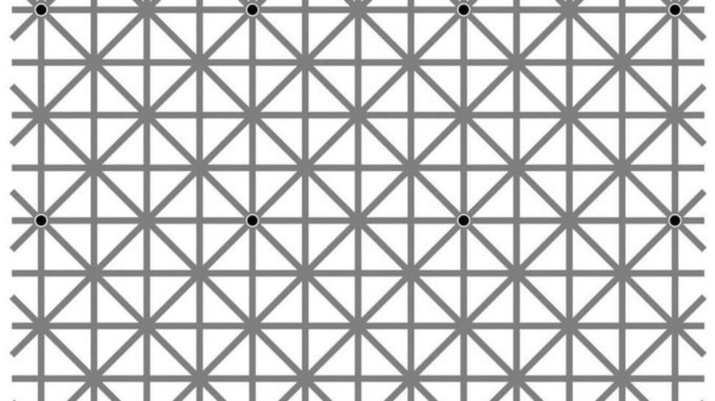La plupart des gens ne peuvent pas voir douze points noirs en même temps.