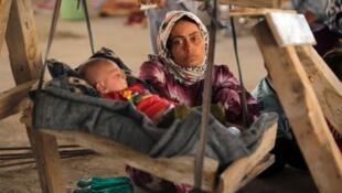 - الأقلية الإيزيدية في العراق