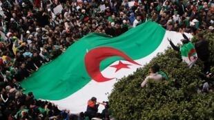 علم ضخم وسط مظاهرات حاشدة للمطالبة باستقالة بوتفلقية، الجزائر العاصمة، 22 مارس آذار 2019