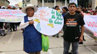 Manifestantes en Yauri, en la región de Cusco el pasado 28 de enero.
