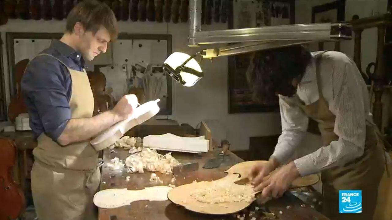 Les luthiers italiens sont préoccupés par une pénurie d'épicéas rouges.