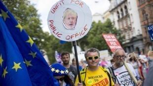 متظاهرون مؤيدون لبقاء بريطانيا ضمن الاتحاد الأوروبي. لندن 20 يوليو/تموز 2019.