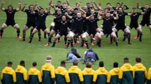 New Zealand host Australia for the second Bledisloe Cup Test on Sunday