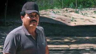 La figura de Ismael 'el Mayo' Zambada pasó a primer plano esta semana con el juicio a 'El Chapo' Guzmán Loera.