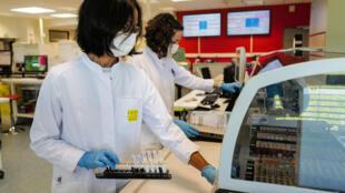 Des techniciennes manipulent des échantillons de sang pour des tests au Covid-19 au laboratoire d'analyses LPA, le 29 mai 2020 à Besançon