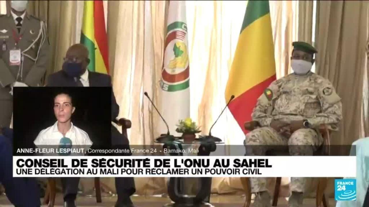 Une délégation au conseil de sécurité de l'ONU au Sahel - France 24