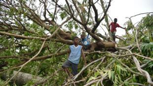 الإعصار دمر حوالى 80 في المئة من المساكن في مدينة جيريمي، جنوبي هايتي.