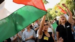 مظاهرة مؤيدة للفلسطنيين بالعاصمة الفرنسية باريس في 2014