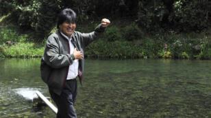 Evo Morales visite un élevage de truites pendant sa campagne électorale, le 11 octobre.