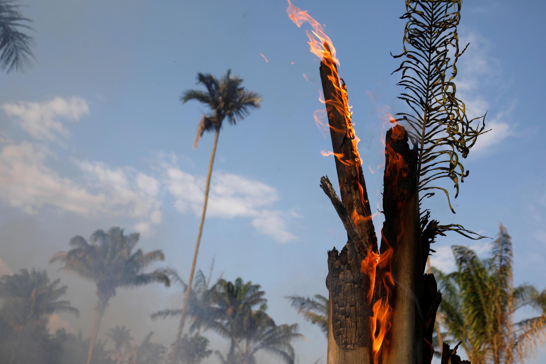 آثار حرائق غابات الأمازون بالبرازيل. 20 أغسطس/آب 2019.