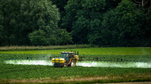 "Glyphosate is used as a herbicide by farmers, but was designated a ""probable carcinogen"" by the WHO in 2015."
