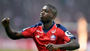 L'Ivoirien Nicolas Pepe sous le maillot du Lille OSC.