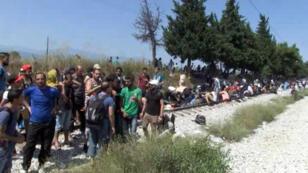 Chaque jour, des milliers de migrants tentent de franchir la frontière grecque pour passer en Macédoine.