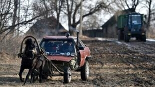 """Farmer Alexei Usikov made his """"horse-mobile"""" from an old Audi"""