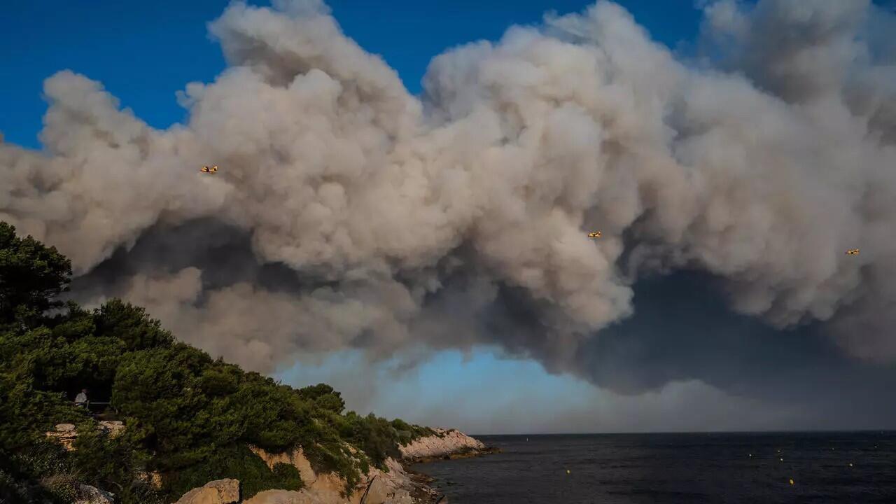 Un feu a ravagé 800 hectares de végétation près de Marseille, mardi 4 août 2020.