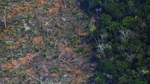 Tierra deforestada en la selva amazónica cerca de una zona afectada por incendios, a unos 65 km de Porto Velho, estado de Rondonia, Brasil, el 23 de agosto de 2019