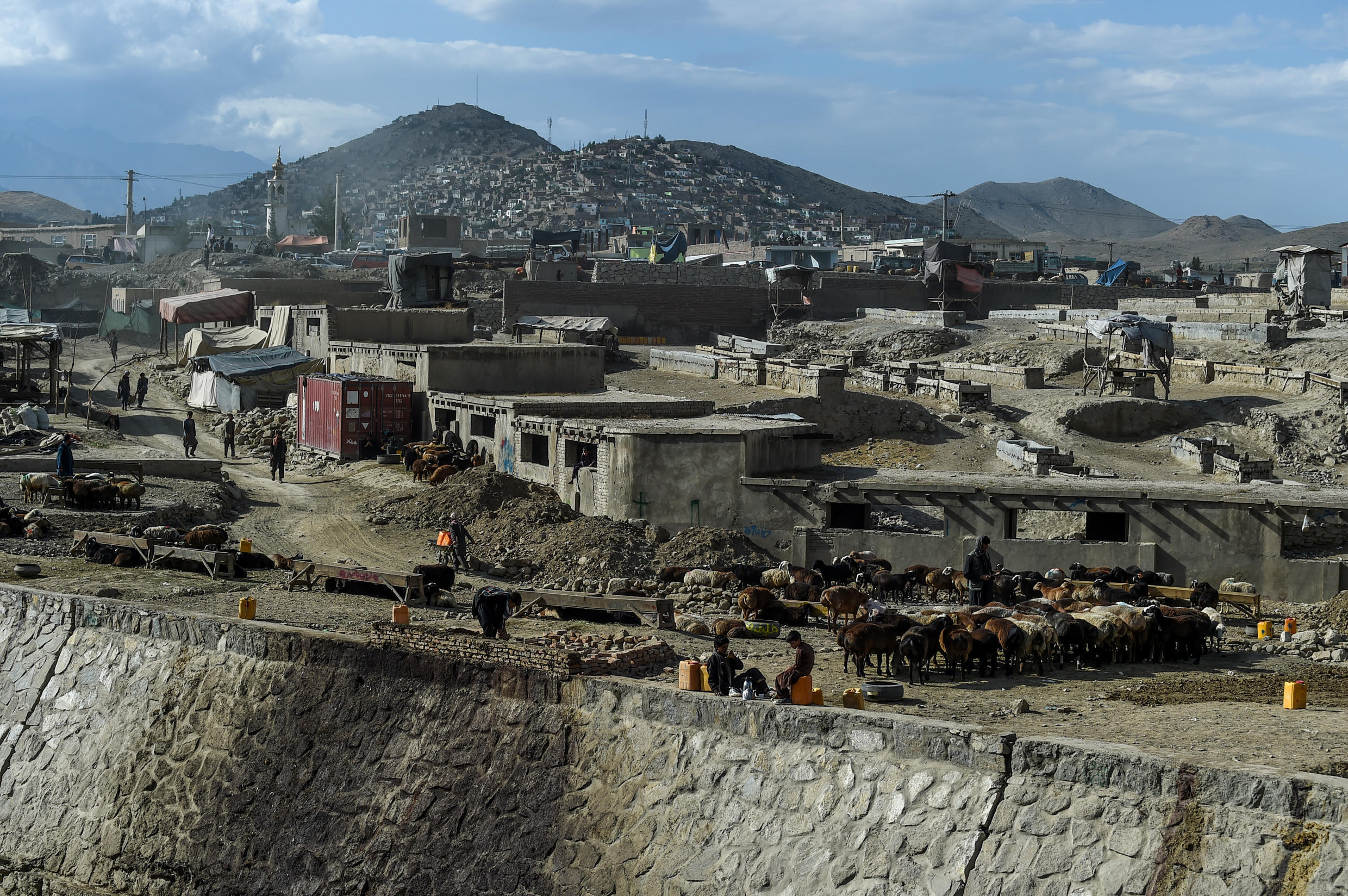 In recent months violence has soared in Afghanistan, with the Taliban carrying out near-daily attacks against security forces
