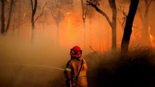 Un bombero mientras combatía un incendio en la zona rural de Salt Ash, Australia, el 22 de noviembre de 2018.